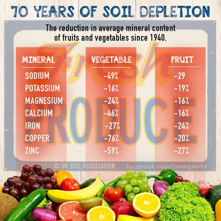 Fruits and Vegetables are Not What They Used to be